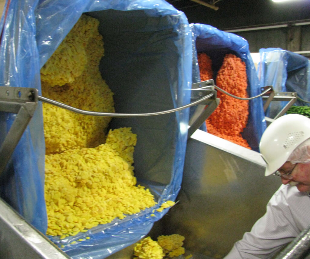 Boxes of vegetables get hoisted up in preparation for processing. From left to right yellow carrots, orange carrots and green beans.